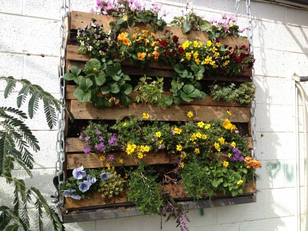 Wooden Pallet Green Wall