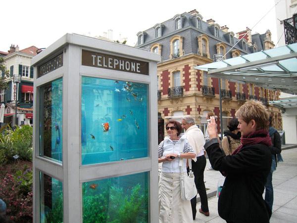 Phone Box Aquarium