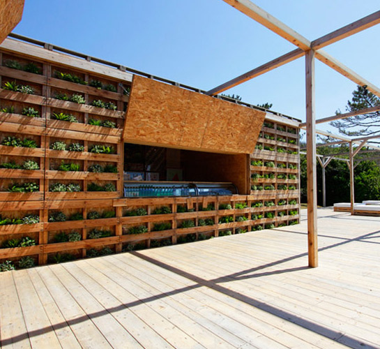 wooden pallet beach house