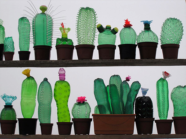 Veronika Richterova Cactai made from Upcycled PET Bottles