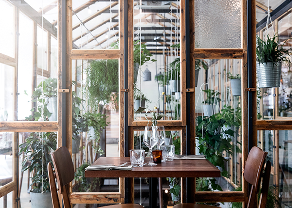 Table for two against a botanical backdrop in restaurant interior of Väkst