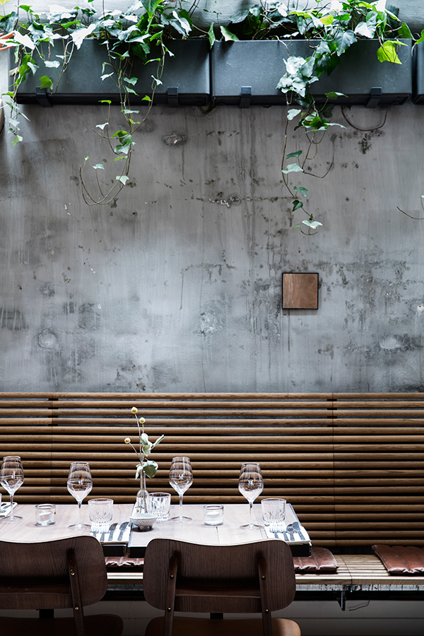Weathered concrete walls and suspended potted placts in botanic restaurant interior