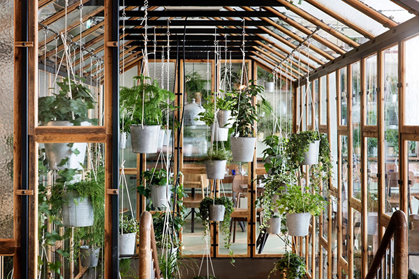 A beautiful eco botanic restaurant interior at väkst