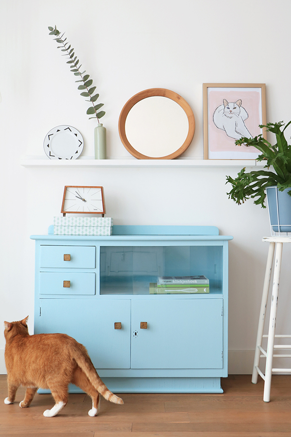 blue vintage cabinet with ginger cat