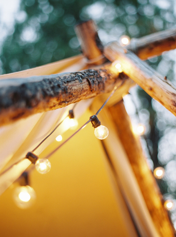 Detail of festoon lights at outdoor wedding