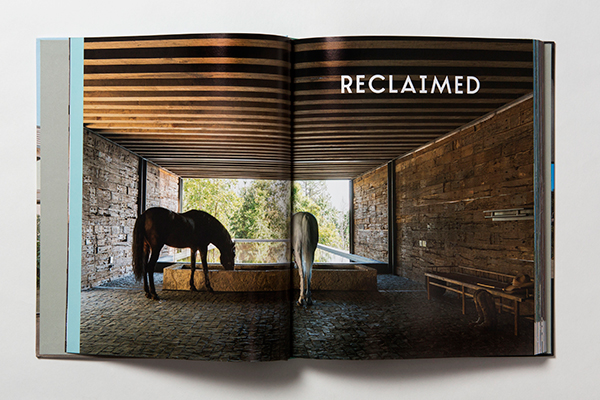 Reclaimed chapter of Renovate Innovate by Antonia Edwards