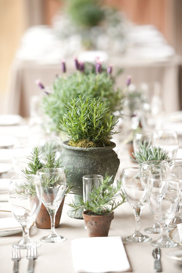 potted plant wedding table centrepiece
