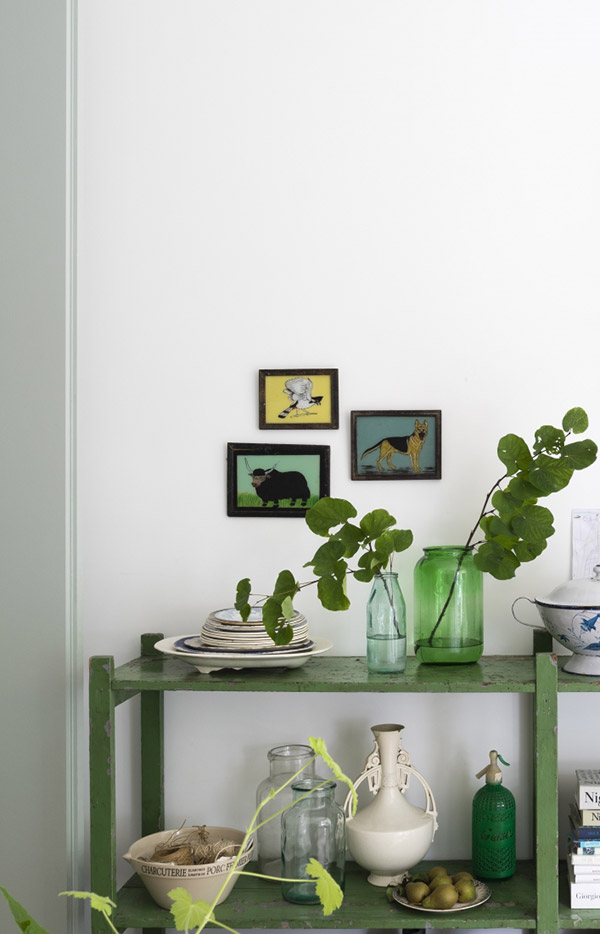Green painted shelving in the kitchen
