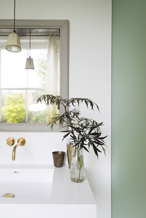 Plant cutting in the bathroom