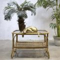 vintage rattan coffee table with plants