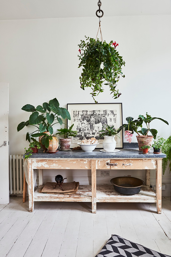 East London home decorated with plants and vintage furniture