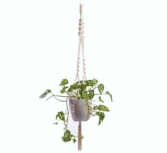 Macrame plant hanger made from white recycled cotton