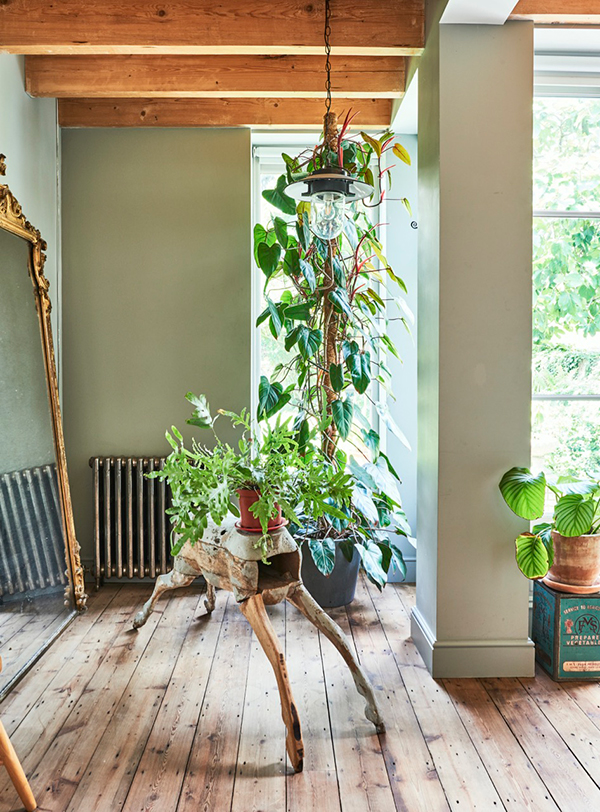 Vintage and plants in East London home