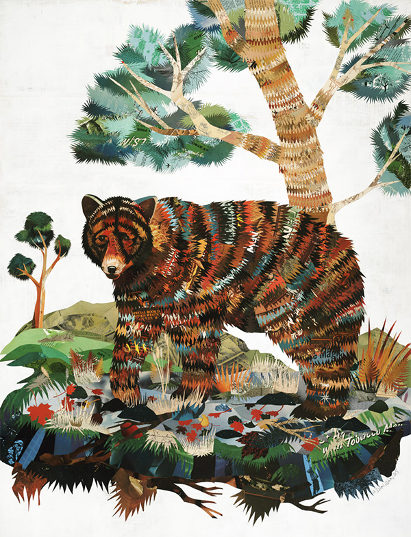 Bear Collage by Dolan Geiman