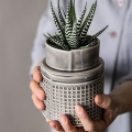 Holding a grey ceramic planter and cactus