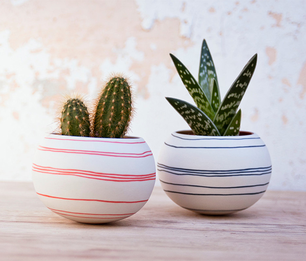 Striped round cactus planters