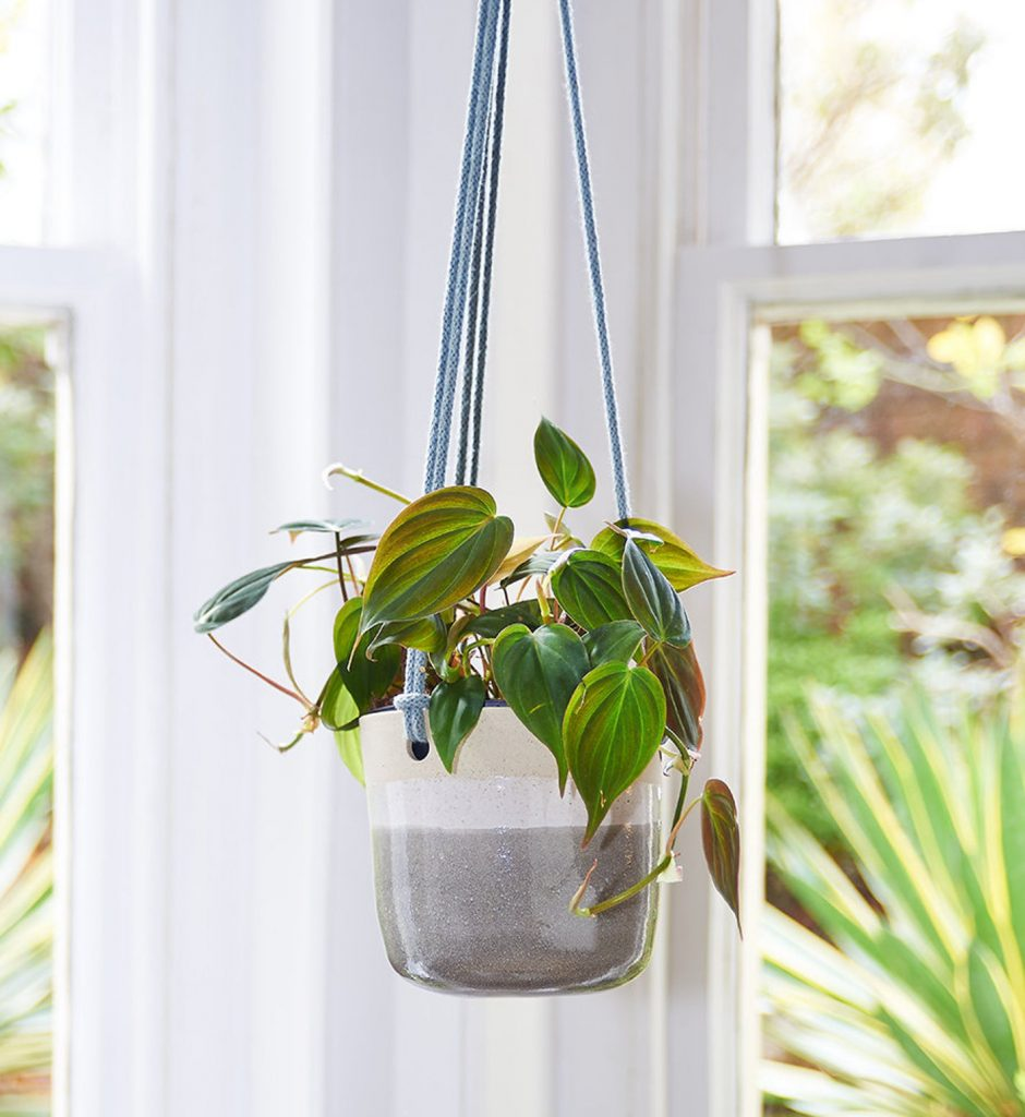 grey and white hanging ceramic pot plant