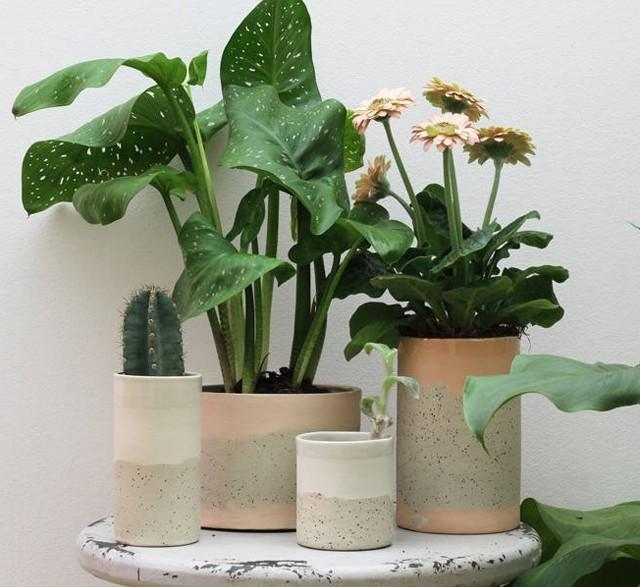Modern speckled ceramic plant pots