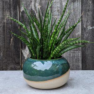 green ceramic orb vase plant pot