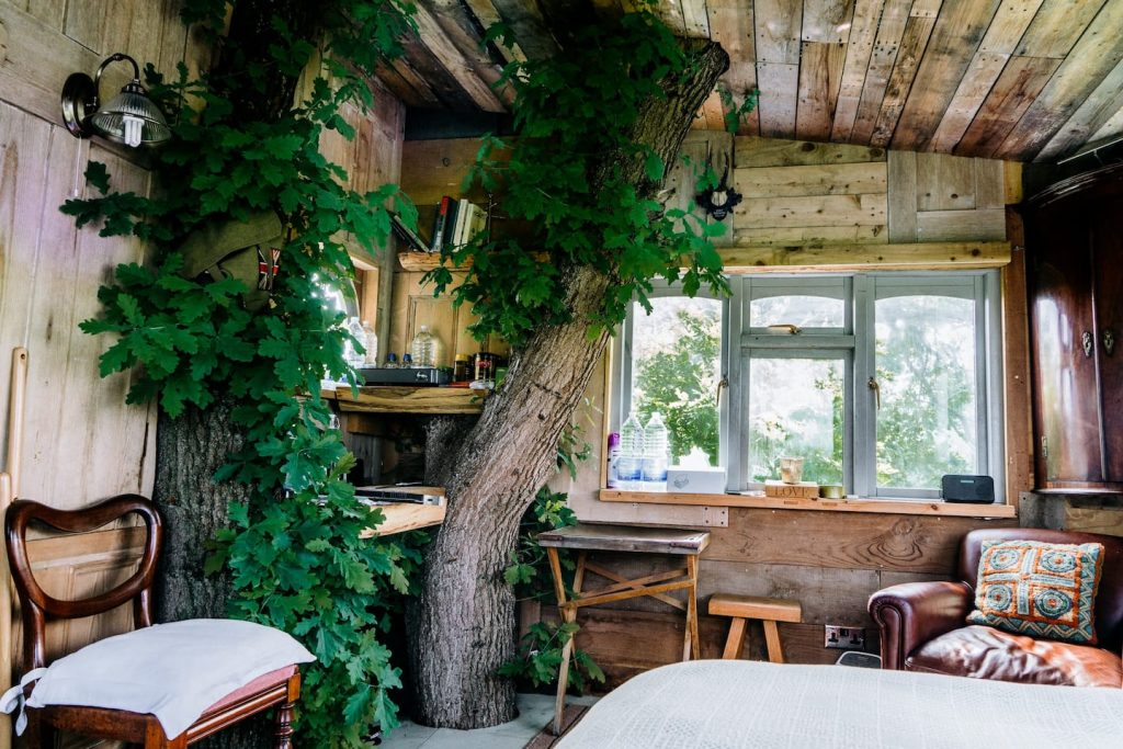 Treehouse to rent in Kent
